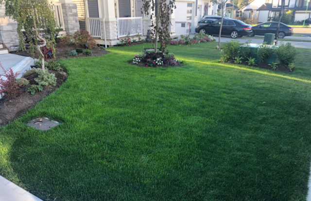 greenleaf-irrigation-lawn