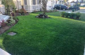 greenleaf-irrigation-lawn