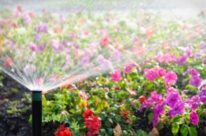 greenleaf-irrigation-flowers